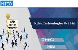 Nitso HRMS Software